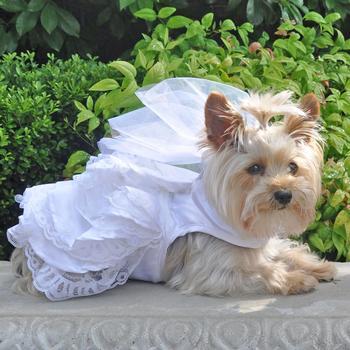 a50b1a103712 Dog Wedding Harness Dress Set